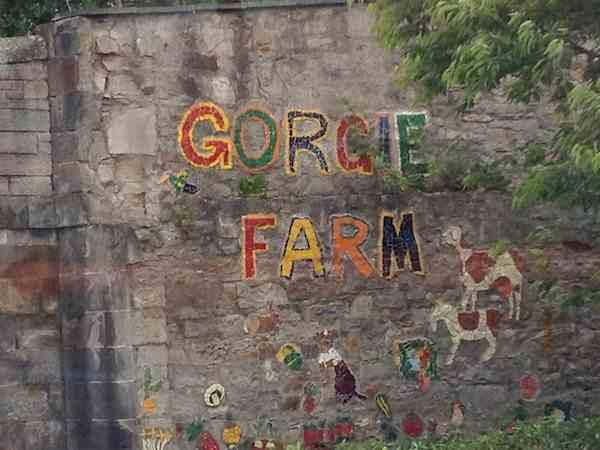 Gorgie-CIty-Farm