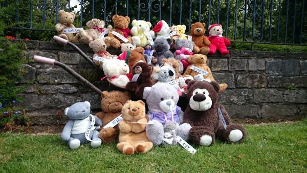 Teddy Bear Hunt 1