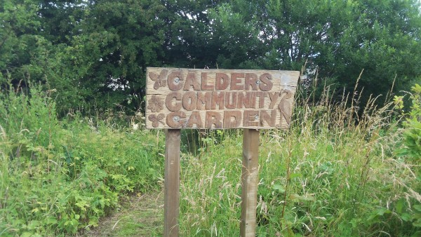Calders Community Garden Willow