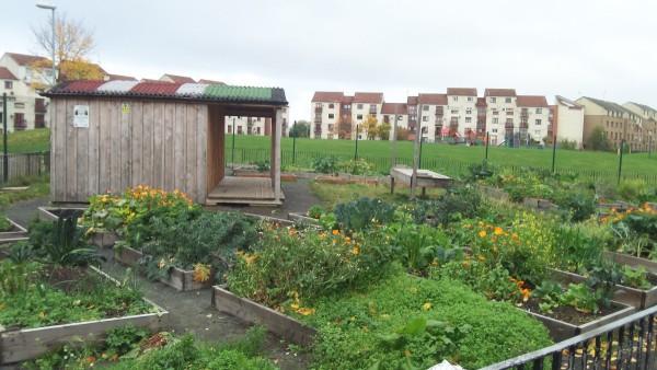 WHEE Edible Estates Clovenstone Community Garden