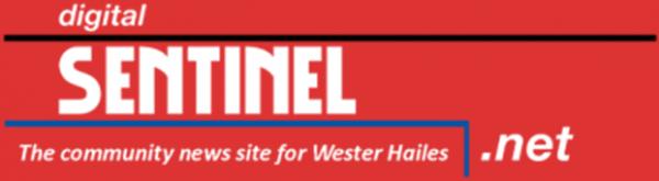 Digital Sentinel Logo