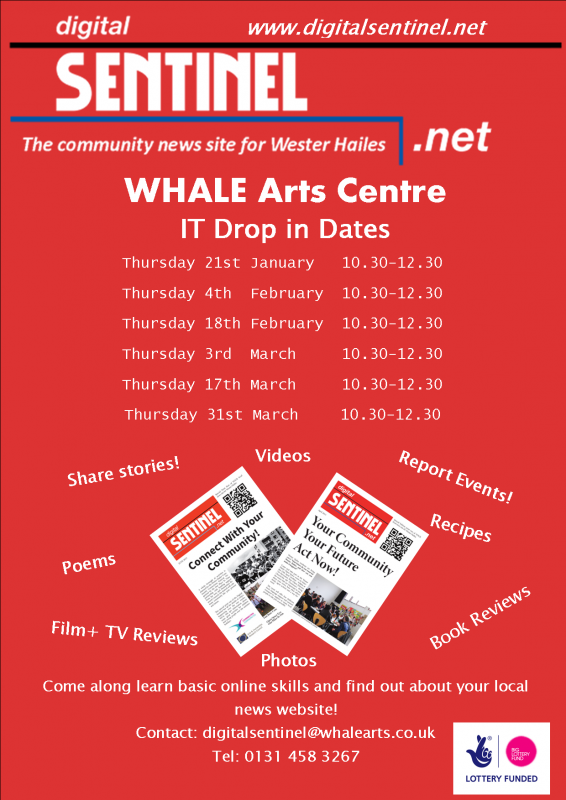 Community News Reporter WHALE dates