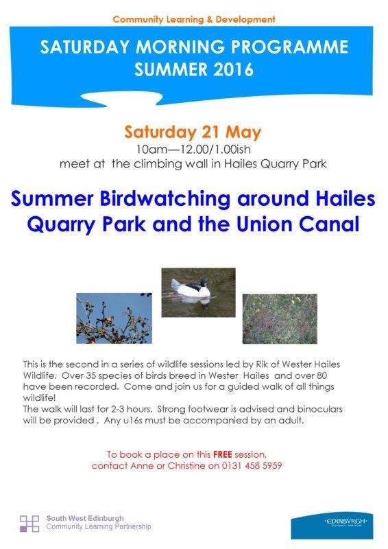Summer Birdwatching in Wester Hailes 21.5.16